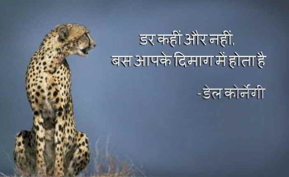 Courage Quotes in Hindi with Lion Images