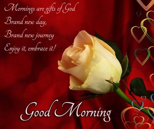 Good Morning Love Messages with Pic