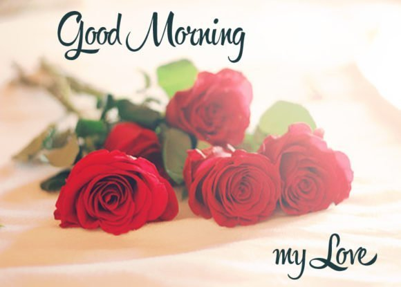 Good Morning Wallpaper With Love Sayari : Romantic Good Morning Love Shayari Images, Photo ????? ???