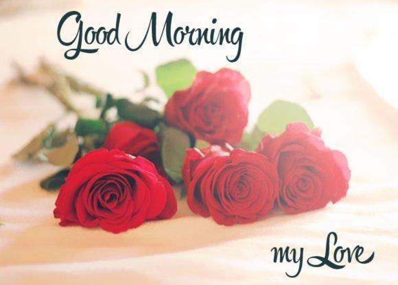 Good Morning Wallpaper With Love Sayari : Romantic Good Morning Love Shayari Images, Photo ????? ???