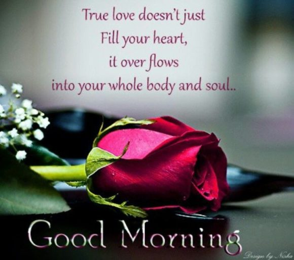 Good Morning Love Shayari Photo
