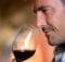Wine Sharab Peene Ke Fayde शराब पीने से है ये फायदे