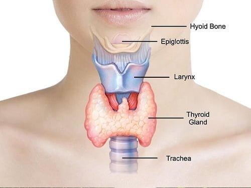 Thyroid Bimari Ke Lakshan Ilaj - Symptoms Treatment in Hindi थायराइड बीमारी के लक्षण और इलाज