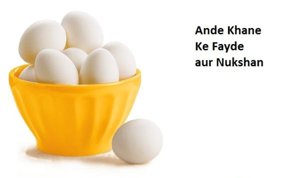 egg-khane-ke-benefits-hindi