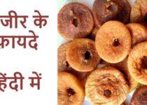 अंजीर गुण, फायदे एवं नुकसान - Figs Benefits and Side-Effects in Hindi