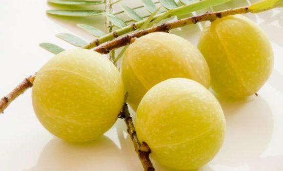 आंवले के फायदे, औषधीय गुण एवं लाभ - Amla Benefits and Side-Effects in Hindi