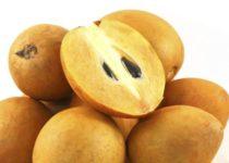 चीकू के जबरदस्त गुण, लाभ, फायदे और नुकसान - Chiku Fruits Benefits and Side-Effects in Hindi