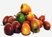 बेर-खाने-से-फायदे-Health-Benefits-of-jujube-in-Hindi