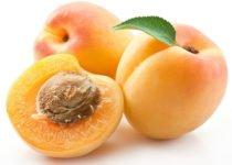 खुबानी के फायदे, स्वास्थ्य लाभ एवं नुकसान - Apricot Khubani Benefits and Side Effects in Hindi