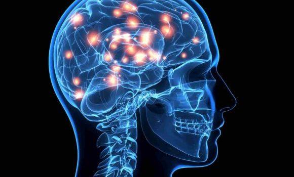 दिमाग मस्तिष्क के बारे में 36 आश्चर्यजनक तथ्य - Amazing Facts About Brain in Hindi