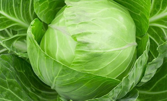 पत्ता गोभी के फायदे और नुकसान - Cabbage (Patta Gobhi) Benefits and Side-effects in Hindi
